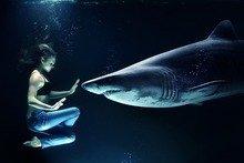 femme en position lotus devant un requin